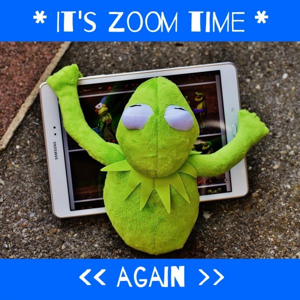 Kermit mit Tablet 'It's Zoom time again'